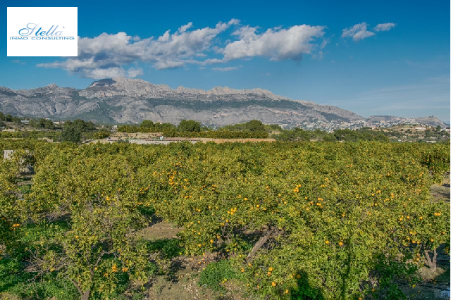 residential ground in Alfaz del Pi(Planet) for sale, plot area 15000 m², ref.: AM-242DA-3700-6